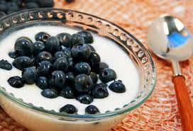 yogurt blueberries